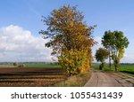 altenburg   germany  autumnal... | Shutterstock . vector #1055431439