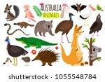 Australian Animals. Vector...