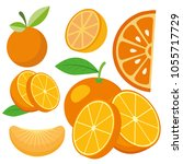 orange fruit set | Shutterstock .eps vector #1055717729