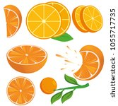 orange fruit set | Shutterstock .eps vector #1055717735