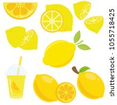 lemon fruit set | Shutterstock .eps vector #1055718425