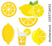 lemon fruit set | Shutterstock .eps vector #1055718431