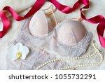 women's lace sexy underwear... | Shutterstock . vector #1055732291