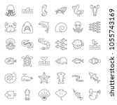 aquatic ocean life such as...   Shutterstock .eps vector #1055743169