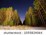 starry night over the forest.... | Shutterstock . vector #1055824064