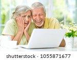 senior couple using   laptop | Shutterstock . vector #1055871677