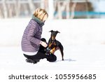 manchester terrier running and... | Shutterstock . vector #1055956685