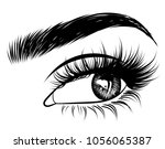 illustration of woman's sexy... | Shutterstock .eps vector #1056065387