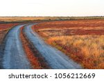 Small photo of Dirt road in the steppe among alkali soils surrounded by plants by red and green plants and saline at sunset