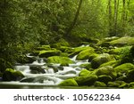 Mountain Stream In The...