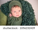 nwborn swaddled in green coccon ... | Shutterstock . vector #1056232439