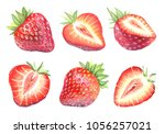 collection of illustrations of... | Shutterstock . vector #1056257021