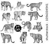 big set of hand drawn sketch... | Shutterstock .eps vector #1056334541