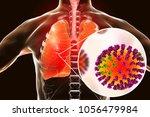 flu viruses in human lungs  3d... | Shutterstock . vector #1056479984