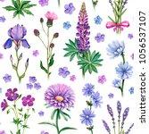watercolor illustrations of... | Shutterstock . vector #1056537107
