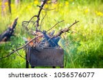 closed up campfire in barbecue... | Shutterstock . vector #1056576077