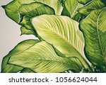 green leaf for natural... | Shutterstock . vector #1056624044