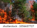 fire. wildfire  burning pine... | Shutterstock . vector #1056637727