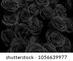 black roses isolated on a black ... | Shutterstock . vector #1056639977
