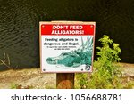 Small photo of Don't feed alligators signage at the Bird Rookery Trail- Naples Florida- March 19, 2018.