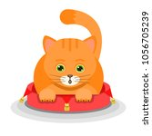 ginger cat lying on a soft red... | Shutterstock .eps vector #1056705239