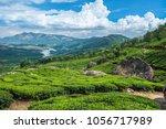 tea plantations in kerala | Shutterstock . vector #1056717989