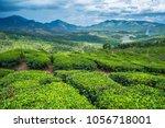 tea plantations in kerala | Shutterstock . vector #1056718001