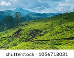 tea plantations in kerala | Shutterstock . vector #1056718031