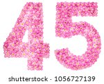 arabic numeral 45  forty five ... | Shutterstock . vector #1056727139