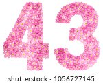 arabic numeral 43  forty three  ... | Shutterstock . vector #1056727145