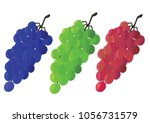 vector set of colorful grapes