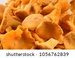 the continuous space filled...   Shutterstock . vector #1056762839