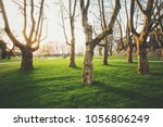 panoramic low wide angle view... | Shutterstock . vector #1056806249