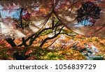 beautiful autumn leaves with... | Shutterstock . vector #1056839729