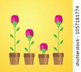 flowers  vector illustration.... | Shutterstock .eps vector #1057181774