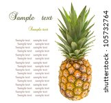 mini pineapples on the white... | Shutterstock . vector #105732764