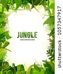 jungle tropical leaves... | Shutterstock .eps vector #1057347917