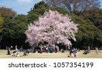 tokyo  japan   march 24th  2018 ...   Shutterstock . vector #1057354199
