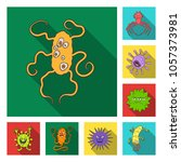 types of funny microbes flat... | Shutterstock .eps vector #1057373981