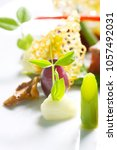 creative cuisine  close up meal | Shutterstock . vector #1057492031