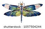 Stock photo isolated watercolour painting of dragonfly on white background 1057504244