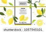 packing design of lemon. vector ... | Shutterstock .eps vector #1057545101