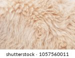 close up of beige synthetical... | Shutterstock . vector #1057560011