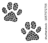 Paw Footprints Composition Of...
