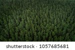 aerial view of trees in... | Shutterstock . vector #1057685681