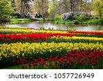 keukenhof  netherlands   april  ... | Shutterstock . vector #1057726949