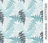 fern frond herbs  tropical...   Shutterstock .eps vector #1057777265