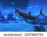 great white shark swimming...   Shutterstock . vector #1057860755