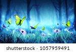 fairy butterflies in mystic... | Shutterstock . vector #1057959491
