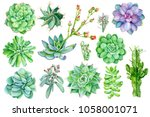 set of succulents  watercolor... | Shutterstock . vector #1058001071